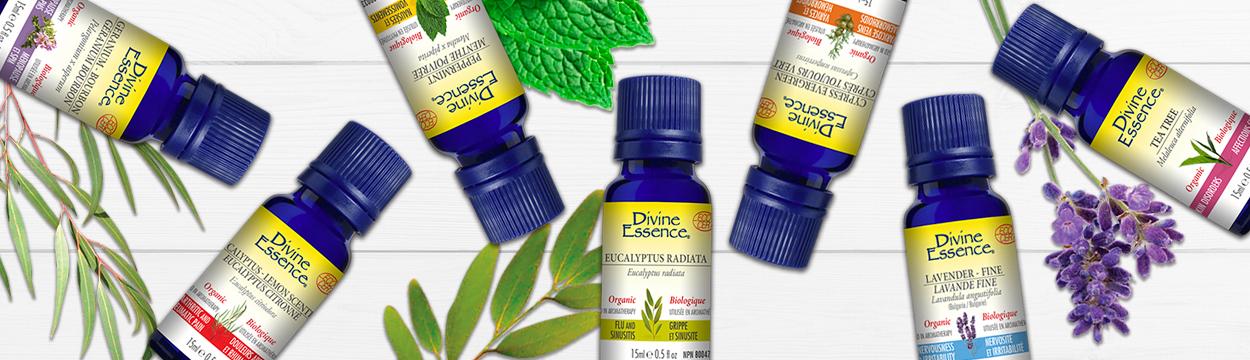 Les huiles essentielles à diffuser pour contrer les microbes...